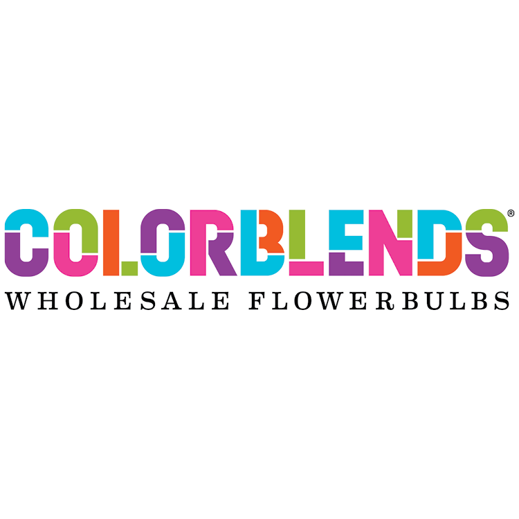 Colorblends Logo