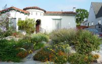 Urban Oasis Landscape Design – California Native Garden