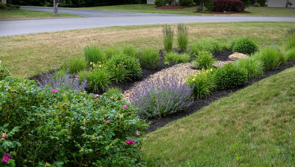 Modified-Rain-Garden_08-600x340