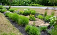 Wickie Rowland/Labrie Associates, Inc. – A Modified Rain Garden